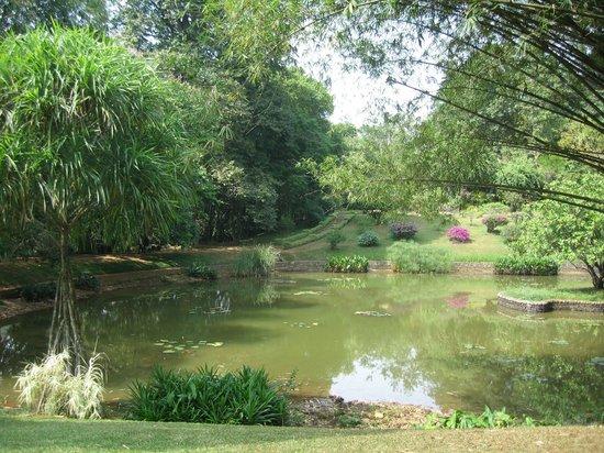 Royal Botanical Gardens: NATURAL ENVIRONMENT OF PARK