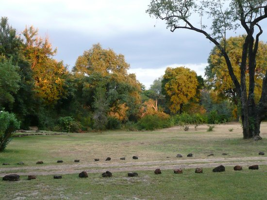 Bushbuck River House: Atardecer