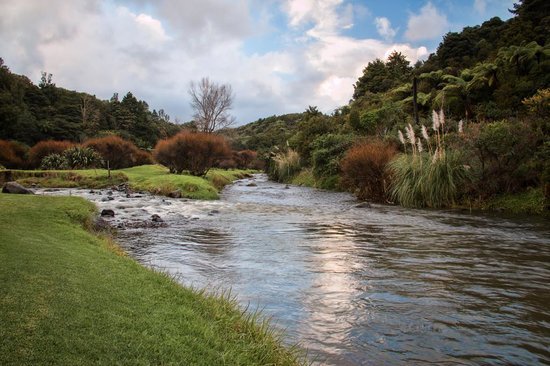 Kauri Coast Top 10 Holiday Park: Amazing park-like setting in the bush