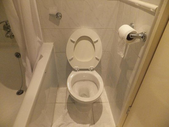 Central Park Hotel: Bathroom1