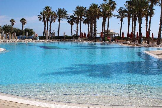 Hilton Malta: pool
