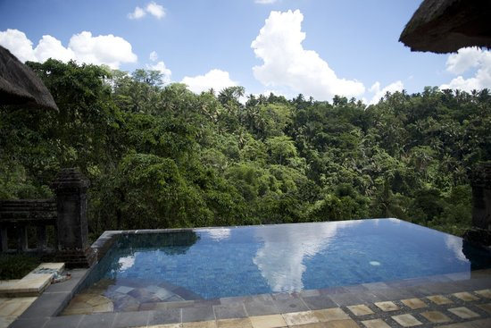 Puri Wulandari Boutique Resort: our private swimming pool and view from the villa