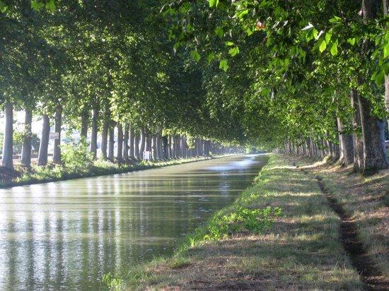 L'Echappee Belle Chambres d'Hotes : Canal du Midi