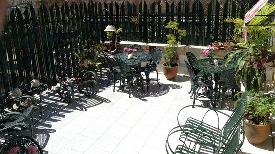 Casa Colonial La Terraza: Terrace