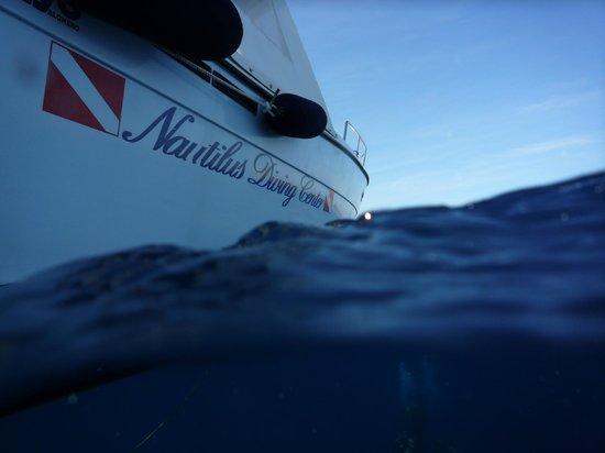 Nautilus Diving Center : entre mer et bleu