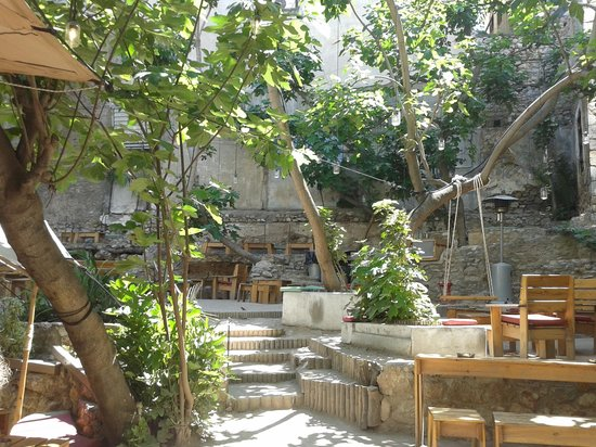 Six D.o.g.s, Athens - Restaurant Reviews, Phone Number & Photos - TripAdvisor