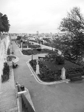 Miradouro São Pedro de Alcântara : чудесные сады
