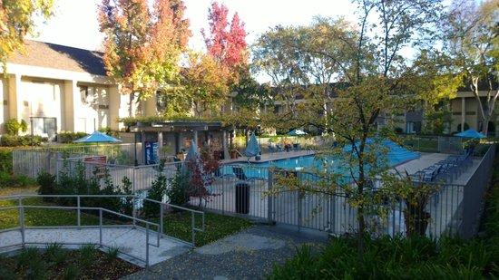 Sheraton Sunnyvale: Pool