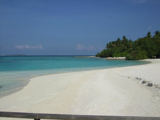 Makunudu Island: beach view