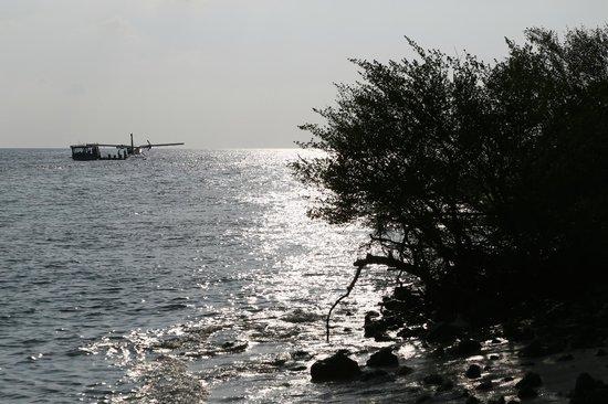 Dusit Thani Maldives: Leaving seaplane