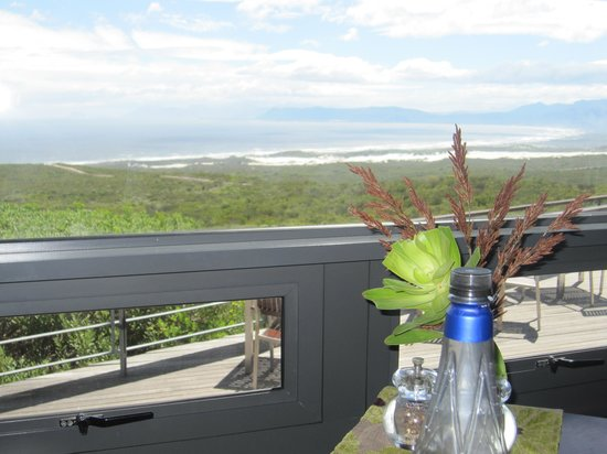 Grootbos Private Nature Reserve: view from out table