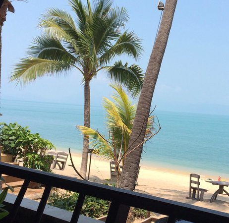 Saree Samui : View from the restaurant