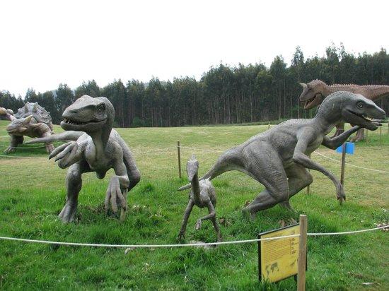 Museo Jurásico de Asturias MUJA: Pequeños amigos
