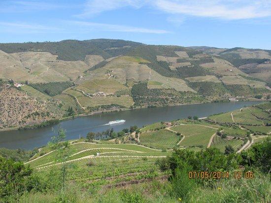 Casa da Farmacia: The Douro
