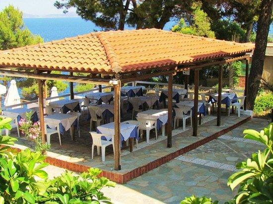 Paradise Hotel - Alonissos: Ontbijtterras.