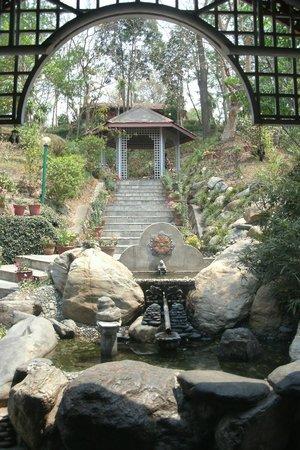 Riverside Springs Resort : una parte della discesa