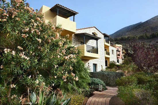 Petra Village Apartments : Rooms and Gardens