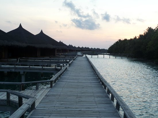 Kuramathi Island Resort: water villas