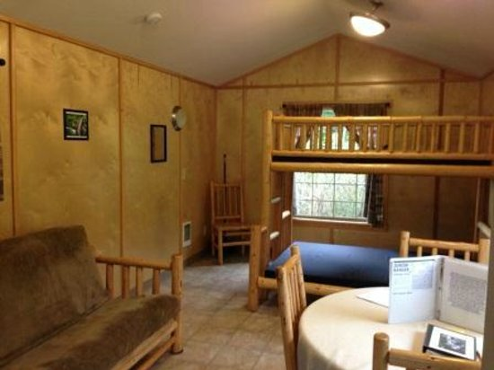 Wallace Falls State Park : Inside of the cabin. The futon folds out to comfortably sleep two people.