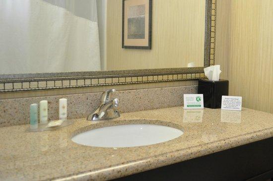 Comfort Inn : Bath