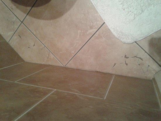 Seton Guest House: Broken tiles
