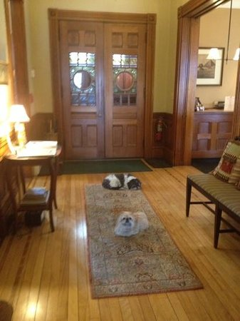 Lang House on Main Street Bed and Breakfast : front hall with the pups