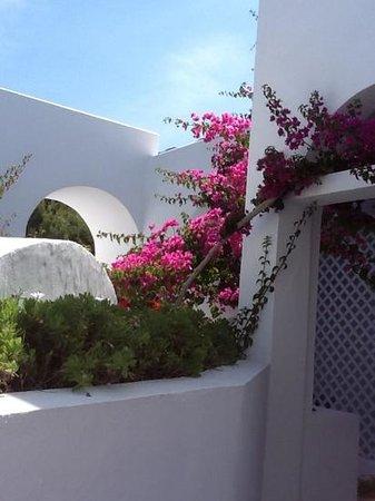 Santorini Kastelli Resort: gem of a hotel
