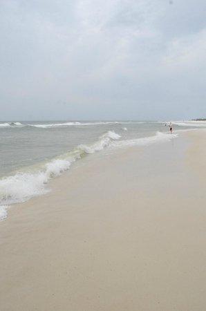 St. Joseph Peninsula State Park: Beach.