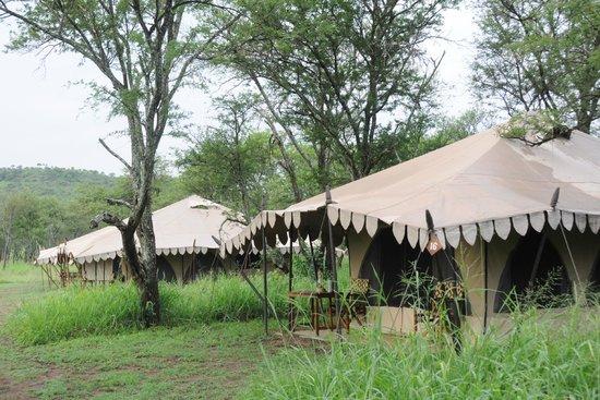 Ronjo Tented Camp: Des tentes ...