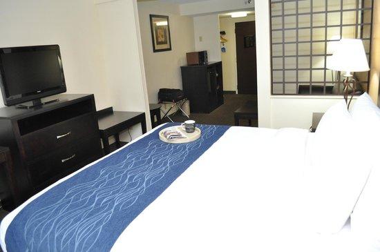 Comfort Inn Oak Ridge - Knoxville: King Suite