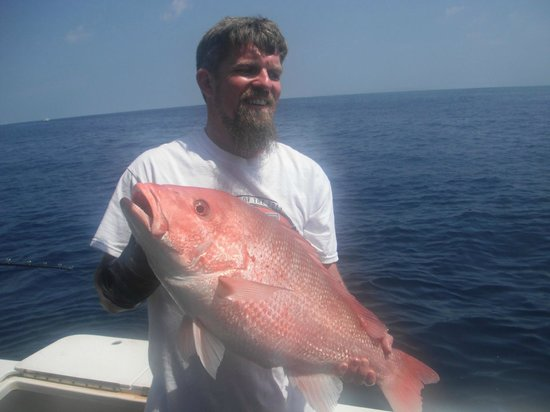 Arts Adventures: Red Snapper