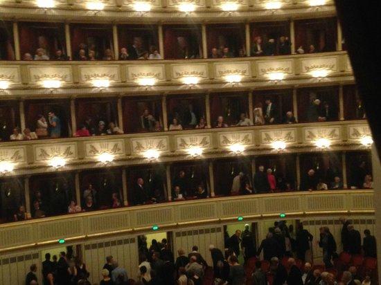 Staatsoper: Зал