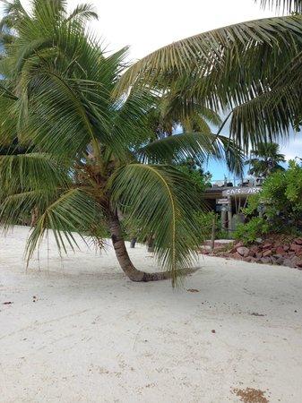 Le Duc de Praslin: Vue plage, Café des Arts