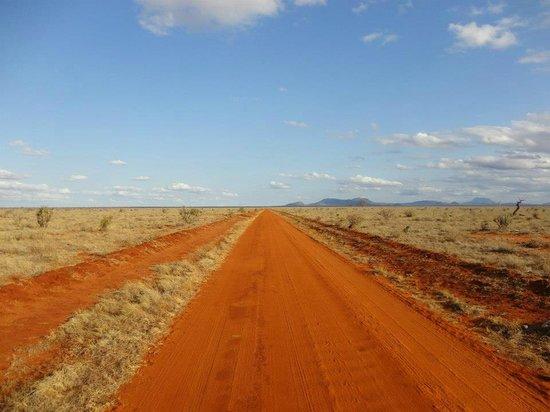 Tsavo East: Savana