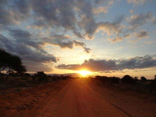 Tsavo East: Tramonto in savana