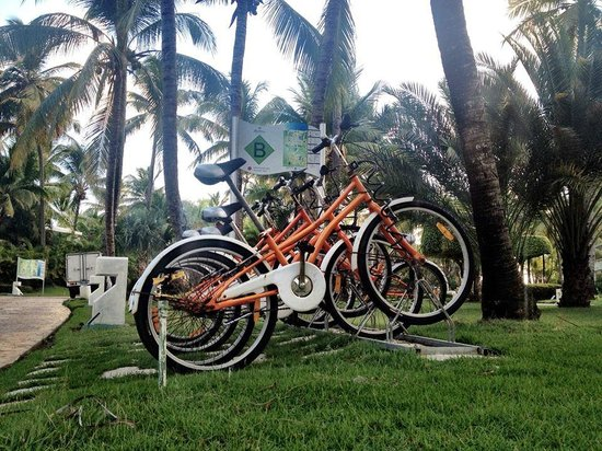The Reserve at Paradisus Punta Cana: A way to get around the resort.