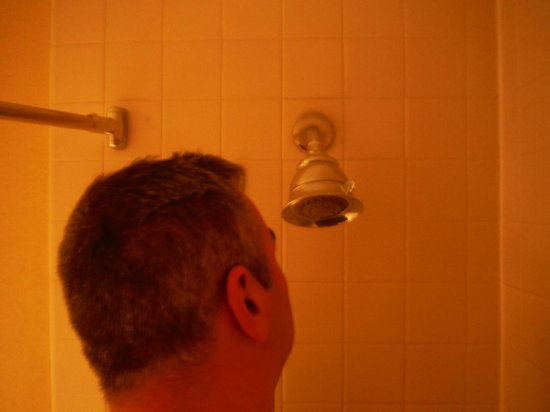 Holiday Inn Tampa Westshore: Low Shower Head