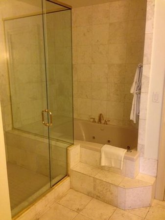 Embassy Suites by Hilton New Orleans - Convention Center : awesome bathroom in 719