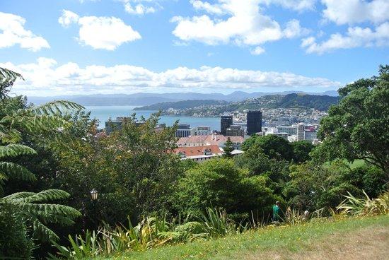 Novotel Wellington: Bäume, Büsche und Häuser