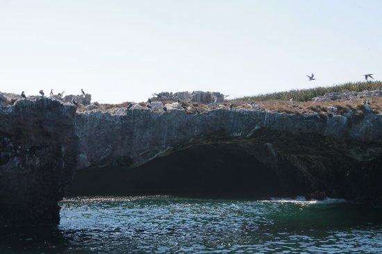 Marietas Islands: Marietas Island