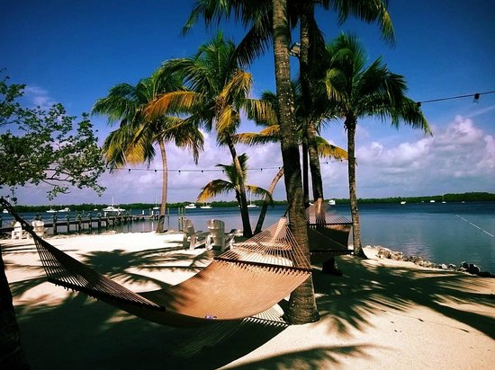 Coconut Palm Inn: Outside relaxing by the water