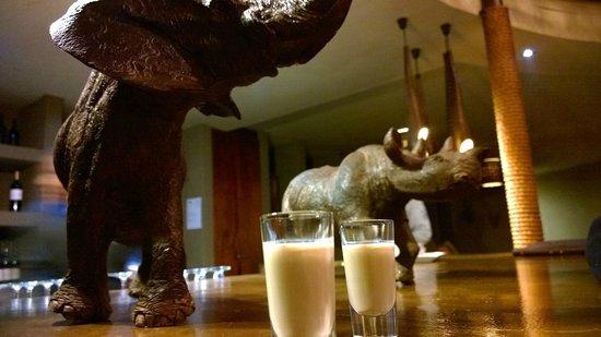 Gondwana Game Reserve : Hotel lounge/bar