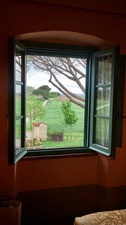 Cortona Resort - Le Terre dei Cavalieri : Vista que inspira tranquilidade