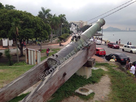 Fort Cornwallis : The cannon