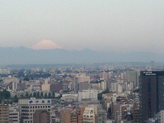 Hyatt Regency Tokyo: Mt Fuji