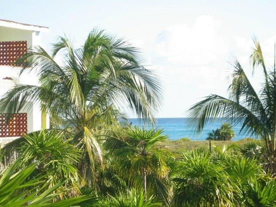 Hotel Pelicano : la mer