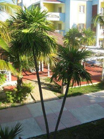 Hotel Pelicano : Vue de la chambre