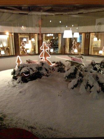 Hotel Antares: Giardino d'inverno