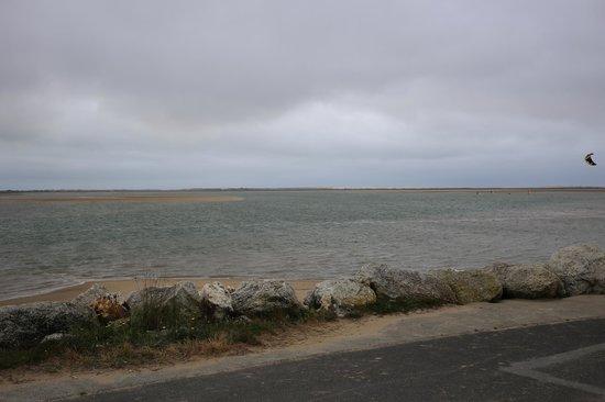 Club Med La Palmyre Atlantique : La Palmyre