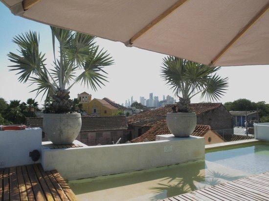 Hotel Casa Lola: Roof top pool